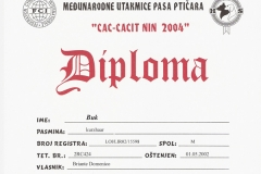 buk-certificato002
