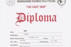 buk-certificato003