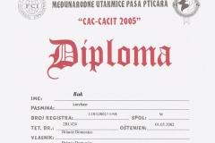 buk-certificato004