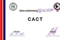 buk-certificato006