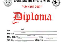 buk-certificato007