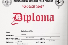 31b-rubriante-brio-cac-cacit-2006-3