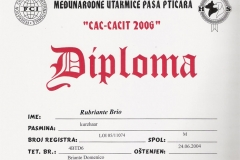 31b-rubriante-brio-cac-cacit-2006-4