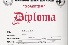 31b-rubriante-brio-cac-cacit-2006-5