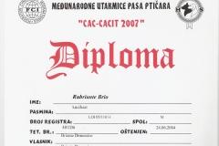 31b-rubriante-brio-cac-cacit-2007-2
