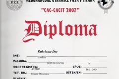 rubriante-der-cac-cacit-2007-1
